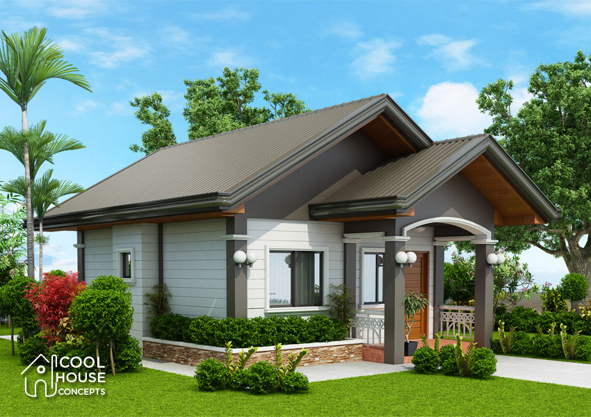 tiny house plan perspective