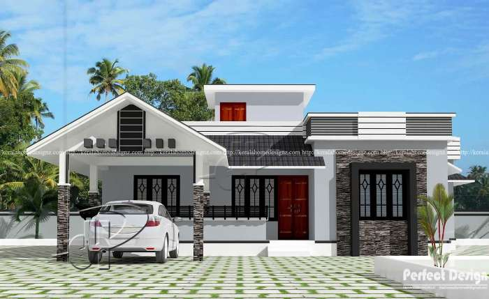 Modern Home One Storey 2 Bedrooms With Roof Deck Cool House Concepts