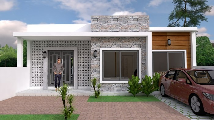 Modern Style Single Storey House With Two Bedrooms And Two Bathrooms Cool House Concepts